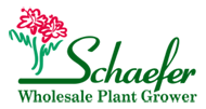 Schaefer Wholesale Logo