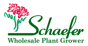 Schaefer Greenhouses Wholesale
